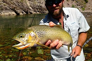 Glacier Anglers - Guided Fly Fishing & Fly Shop :: Fly fish for Cutthroat Trout on the Middle and North Fork of the Flathead River. Beginner or advanced, our expert guides will land you on fish. Full day to Multi-day Trips.