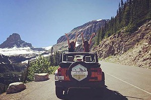Glacier Jeep Rentals - best way to drive the Park :: Explore Montana in a Jeep! Imagine driving Glacier National Park''s legendary Going-to-the-Sun Road with the top down, taking in all the beauty. Call us today for more info!