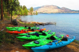 Sea Me Paddle Kayaking Tours • Kayak & SUP Rentals :: Join us for a guided paddle on Flathead Lake. Choose a 2-hour tour or a fun half-day trip to Cedar Island. We will customize a paddle for your group event. Kayak & SUP rentals