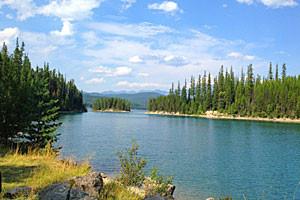 Book National Forest Campsites - outside Glacier