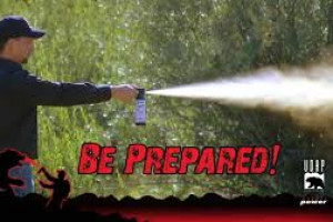 Bear Spray - Rent it During your Glacier Trip
