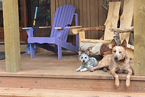 Whitefish Bike Retreat - Pets OK at our location