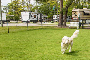 Greenwood Village Inn - RV Park OK for pets