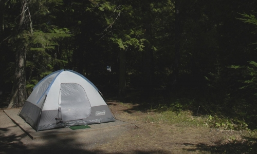 Sprague Creek Campground Glacier National Park Alltrips