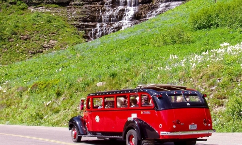Glacier National Park Red Jammer Buses