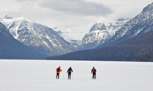 Glacier Backcountry Skiing