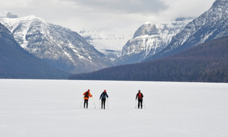 Glacier National Park Cross Country Skiing, Nordic / X-Country - AllTrips