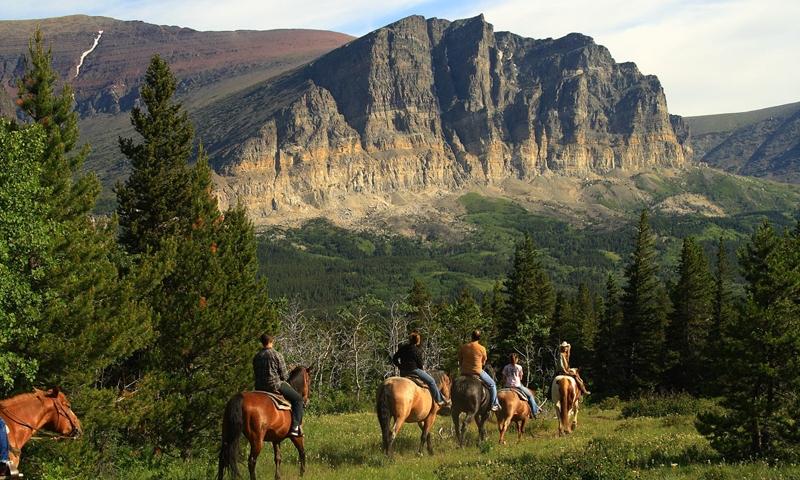 Two Hour Horseback Ride at  Many Glacier