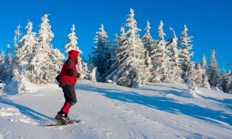 Snowshoeing in the heart of winter